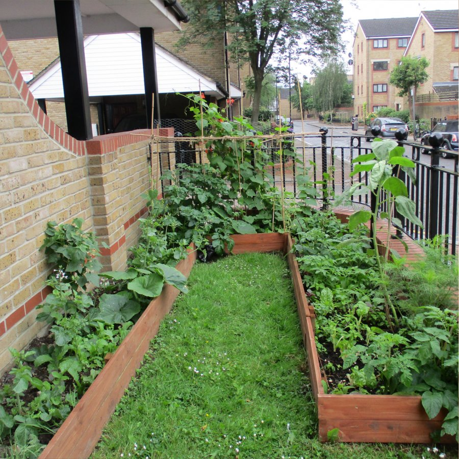 Selby Estate Gardening Club. Photo: Sara Heitlinger