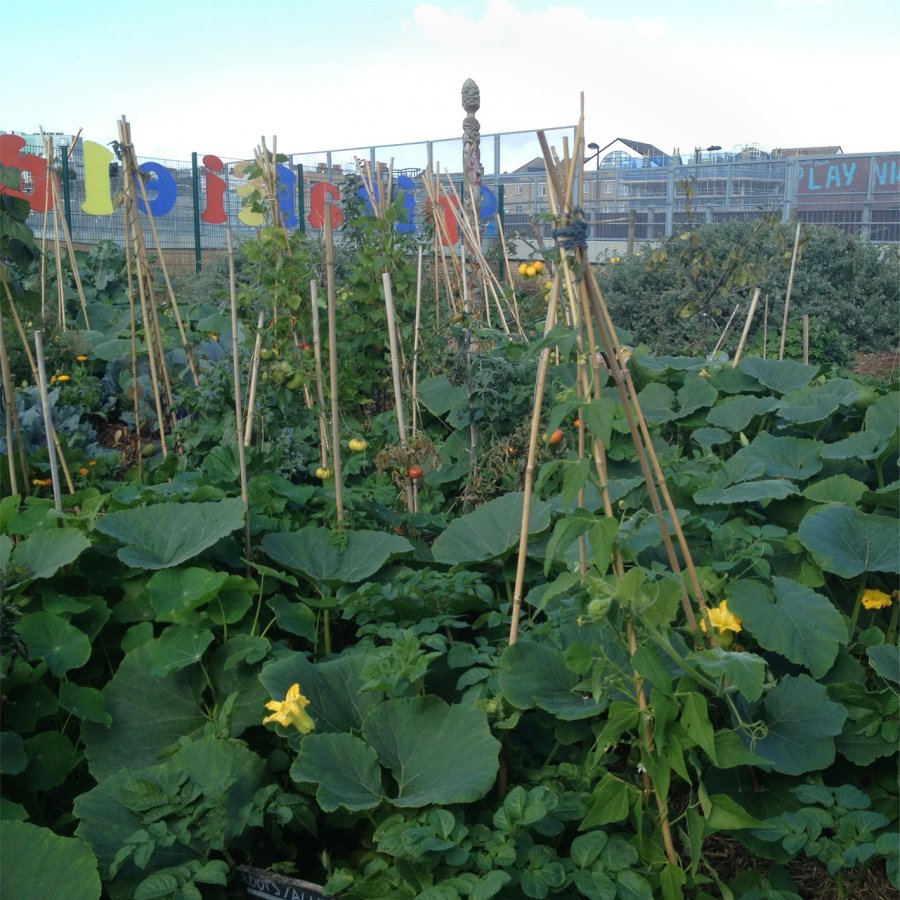 Spitalfields City Farm. Photo: Sara Heitlinger